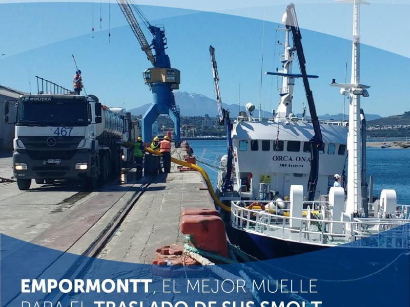 EMPORMONTT - Empresa Portuaria Puerto Montt - EMPRESA PORTUARIA PUERTO MONTT MOSTRÓ AUMENTO EN LA MOVILIZACIÓN DE CARGAS DE SMOLT