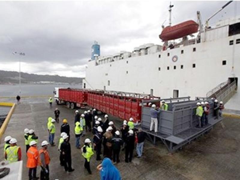 Empormontt tiene planificado tres embarques de ganado para el 2021